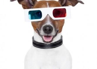 Google Announces Tech Specs for Glass
