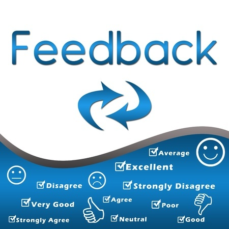 Gathering Feedback Is Important – Here Are Three Plugins to Help You Do That
