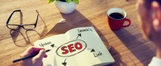 A Basic Guide to Entry-Level SEO