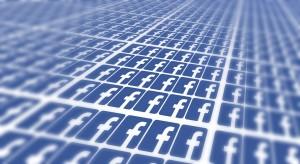 Facebook Panels