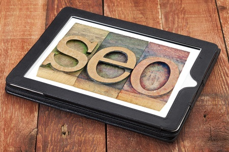 What Do SEO Professionals Focus on Learning?
