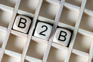 B2B Dice