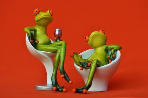 Frog Stories